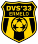 Logo DVS'33 Ermelo 13