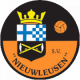 Logo Nieuwleusen SV JO15-2